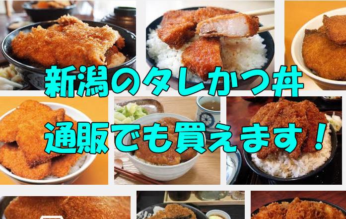 新潟 タレカツ丼 ケンミンショー