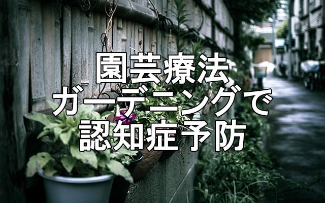 園芸療法-ガーデニング-認知症予防
